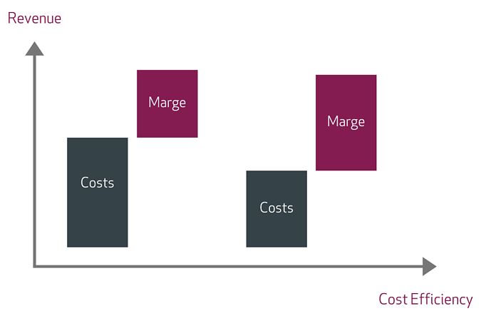 lisec graph revenue costs